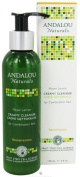 Andalou Naturals Meyer Lemon Creamy Cleanser - 180ml, Pack of 4