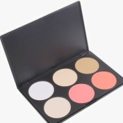 Uhome 2014 Style Professional 6 Colours Contour Face Power Foundation Concealer Camouflage Foundation Makeup Palette make up power two type can be choose