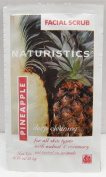 Lot of 12 Naturistics Facial Scrub - Pineapple