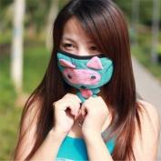 Unisex Adult pm2.5 dustproof antibacterial Microfiber Filtering Mask-Cute cartoon o raccoon dog, Colour randomly send