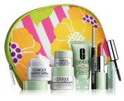 Clinique 2013 June Lord Taylor Bonus Gift $85.00 Value
