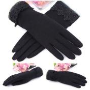 2013 New women gloves Warm gloves for ladies Touch gloves warm Wool gloves