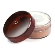 CoverGirl Professional Loose Powder, Translucent Honey 120 20ml