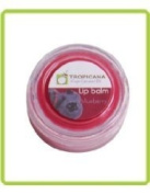 ( Hot Items ) Oil : Virgin Coconut Oil Lip Balm 10ml Blueberry Smell (Pack of 2) Made in Thailand ( by abobon )best sellers