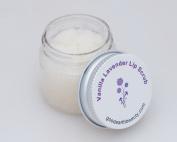 Lip Scrub Lavender Vanilla all natural by Good Earth Beauty