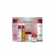 Jigott Essence Moisture Skin Care 5pc Set