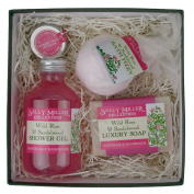Small Square Gift Box - Wild Rose & Sandalwood