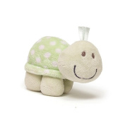 Lolly & Friends Rattles - Green Turtle