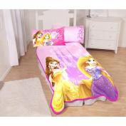 Disney's Princess Castle Royalty Twin Micro Raschel Blanket