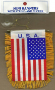 USA Mini Banner