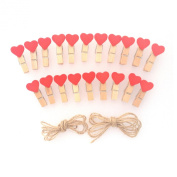 LWR Crafts Red Heart Wooden Mini Clothespins 20 pieces and Jute Cord 2.4m
