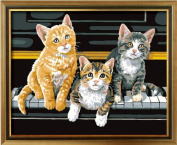 Diy oil painting, paint by number kit- Piano kitten 16*50cm .