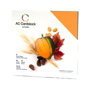 American Crafts 30cm by 30cm Cardstock Variety Pack