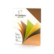 American Crafts 22cm by 28cm Cardstock Variety Pack