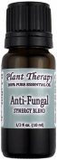 Anti Fungal Synergy Essential Oil Blend. 10 ml (1/3 oz). 100% Pure, Undiluted, Therapeutic Grade. (Blend of
