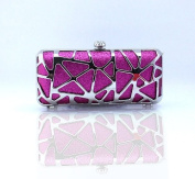 Beautiful Sequin Evening Clutch for Woman