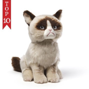 Grumpy Cat Plush Toy