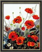 Diy oil painting, paint by number kit- Red Poppy 16*50cm .