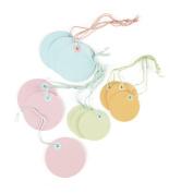 Martha Stewart Crafts Modern Festive Coloured Tags