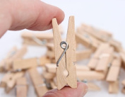 Tiny Favour Size Wooden Spring Style Clothespins 3.5cm Long for Crafts, Favours and More- 144 pcs