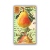 Michel Design Works Tuscan Pear Matchbox 50 Count