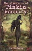 The Adventures of Pinkin Rasbury