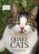 Quake Cats