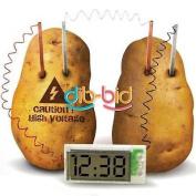 Potato Clock Novel Green Science Project Experiment Kit Kids Lab Home School Toy
