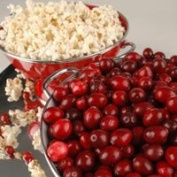 Cranberry Kettle Corn Candle/Soap Fragrance Oil 30ml