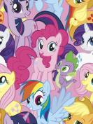 Hasbro Bros My Little Pony Packed Ponies Fleece, 2.5cm , Multicolor