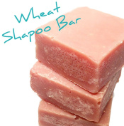 Wheat Shampoo Bar, Cold Process All Natural, No Paraben
