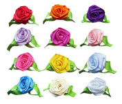 HipGirl Boutique Girls Hair Flower Clips Set.