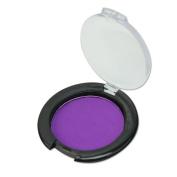 Fashion Non-toxic Temporary Fast Hair Colour Compact Pressed Powder Salon