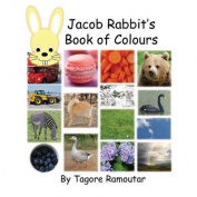 Jacob Rabbit's Book of Colour
