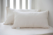 Greenbuds Organic Toddler Pillow with Organic Kapok Fill