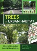 Trees in Urban Habitat