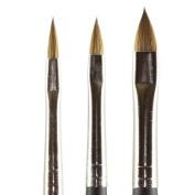 Kolinsky Pure Sable Artist Brush Set Cats Tongue Sizes 2,4,6