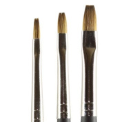 Kolinsky Pure Sable Artist Brush Set Shaders 2,4,6