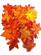 Maple Leaf 4w X 19cm l 50 Pcs Appromextly.