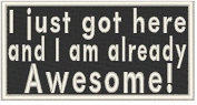 I just got here, and I am already Awesome! Iron-on Patch Biker Emblem White Merrow Border