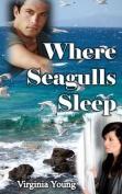 Where Seagulls Sleep