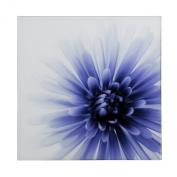 Premier Housewares Floral Glass Print - 60 x 60 cm - Purple