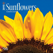 Sunflowers 2015 Mini