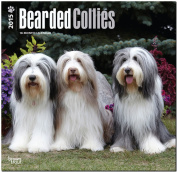 Bearded Collies 2015 Wall