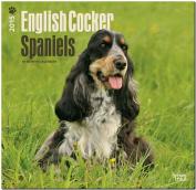 English Cocker Spaniels 2015 Wall