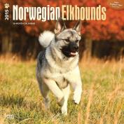 Norwegian Elkhounds 2015 Wall