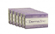 DermaZinc Zinc Therapy Soap, 110ml, 6 Pack