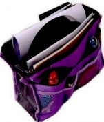 HDE Expandable 13 Pocket Handbag Insert Purse Organiser with Handles