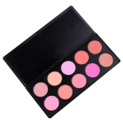 dodocool 10 Colour Make up Blush Blusher Powder Professional Palette Makeup Kit Set