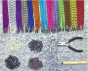 HQdeal Feather Hair Extension Kit with 52 Synthetic Feathers, 100 Beads, Pliers and Hook